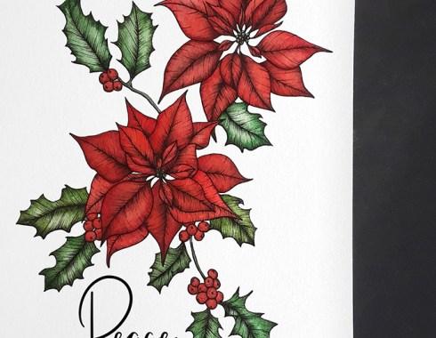 poinsettia botanical illustration