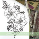 wild rose botanical illustration
