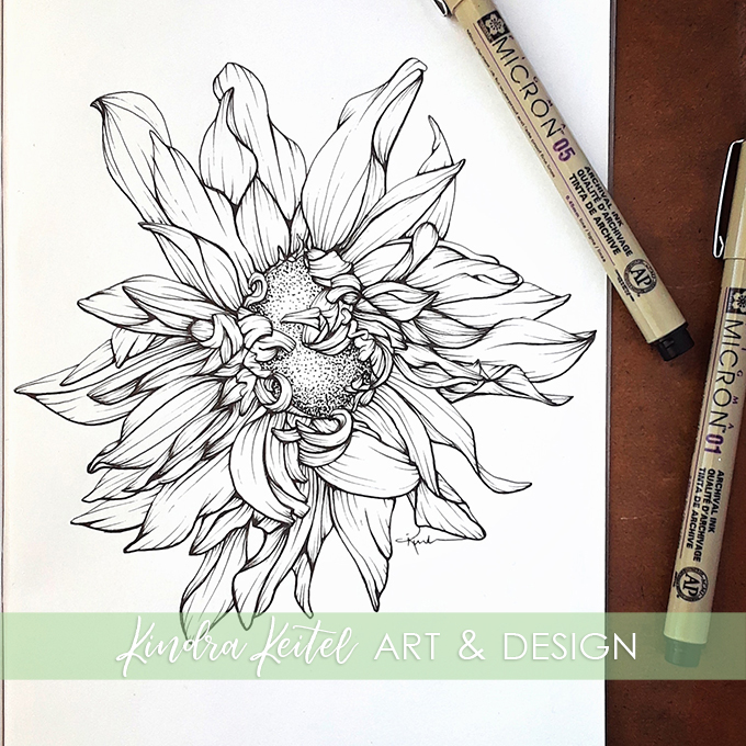 cafe au lait dahlia botanical illustration
