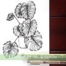 monstera botanical illustration