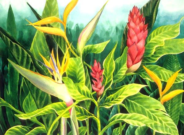 Jasmine's Jungle by Lucinda Hayes