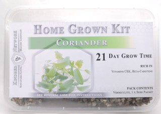 Home Grown Kit Coriander