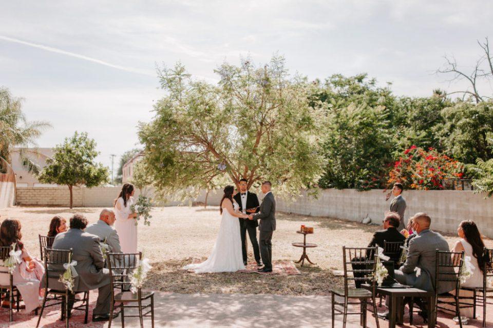 backyard elopement under tree