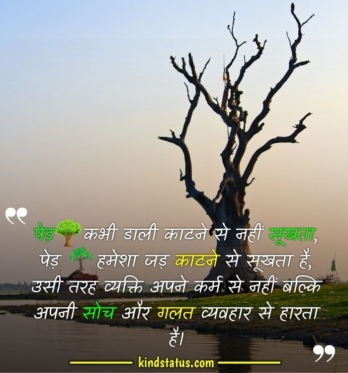 the truth of life quotes in hindi download
