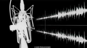 Servicio-de-Audio