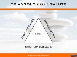 Triangolo-integrato-della-salute-1