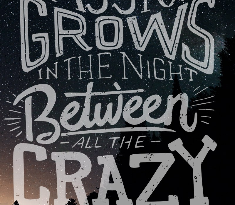 Passion grows in the night. Between all of the crazy.
