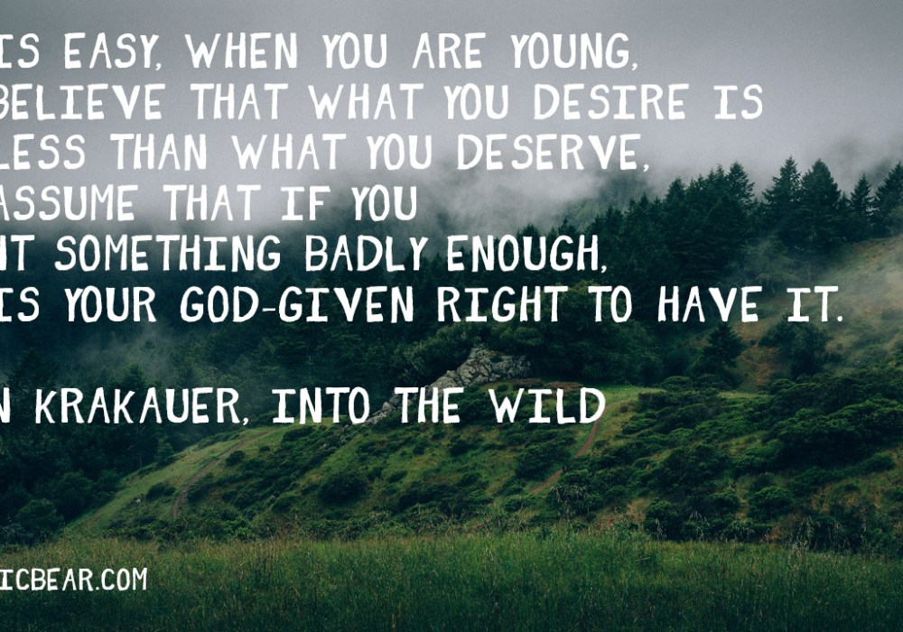 Into The Wild Quotes Best Into The Wild Quote Archives  Kinetic Bear