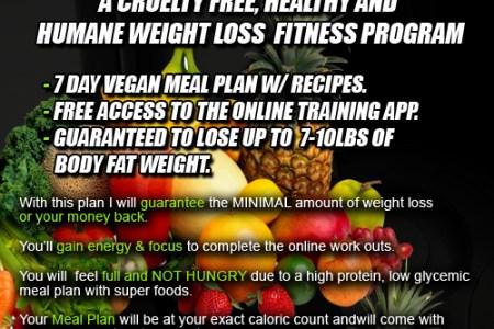 Buy My Vegan Fit Challenge Now!