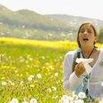 Nem a parlagfű az egyetlen növény, ami megkeseríti az allergiások életét. Az alábbi táblázatból kiolvasható, mikor melyik növény virágzik: *** Forrás: Sándor, K. 2011-03-07 Megjelent: InforMed Hírek 8., 2010-08-30 *** […]