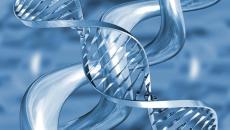 Transzgenerációs Epigenetikus Kineziológia – TEK©® I. szint TEK I. szint A. része:2018. március 3-7.(5 nap, szombattól szerdáig) TEK I. szint B. része: 2018. április 11-15. (5 nap, szerdától vasárnapig) Tematika: […]