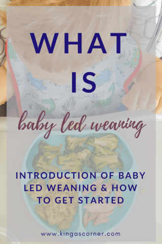 How to start baby led weaning introduction to blw