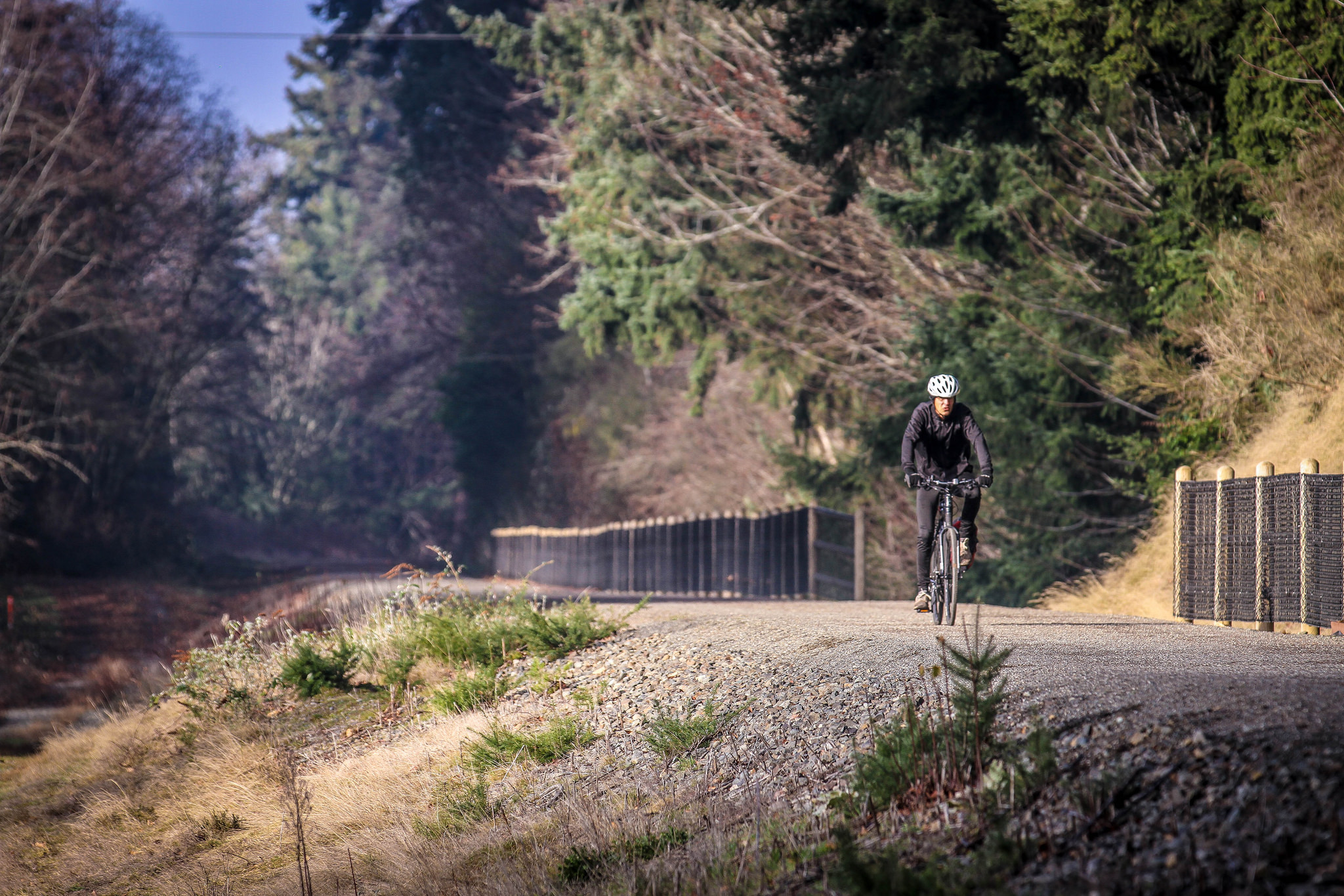 The trail would become part of the everday experience for thousands of King County residents for commute trips, trips from home and school, trips to the store, and for recreation.