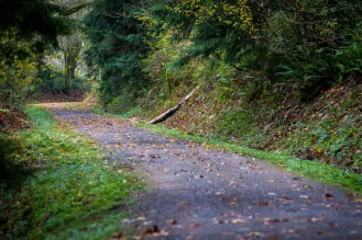 Snoqualmie Valley Trail maintenance