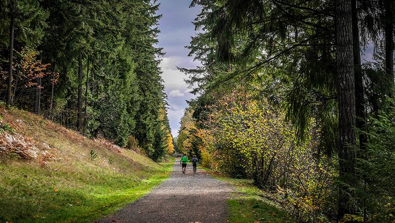 green-to-cedar-rivers-trail-walkers