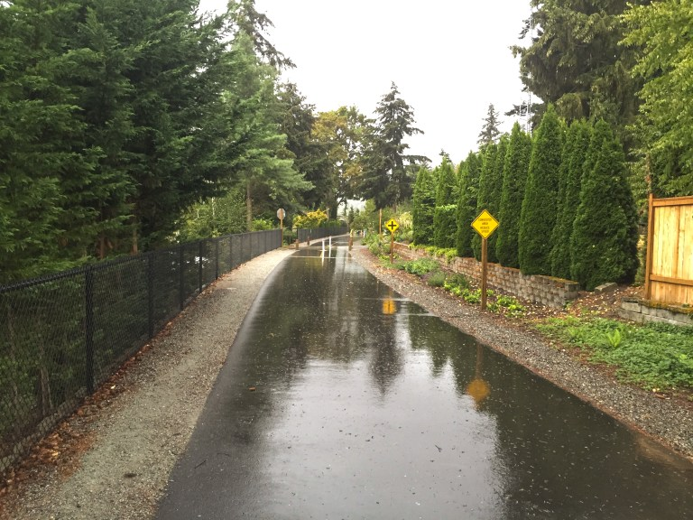ELST-Rainy-Paved