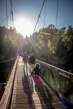 Walking on the bridge at Tolt MacDonald Park