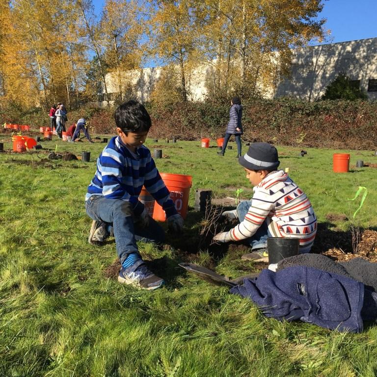 boys planting trees