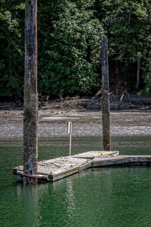 Dockton Park - deterioration to finger piers required closure.