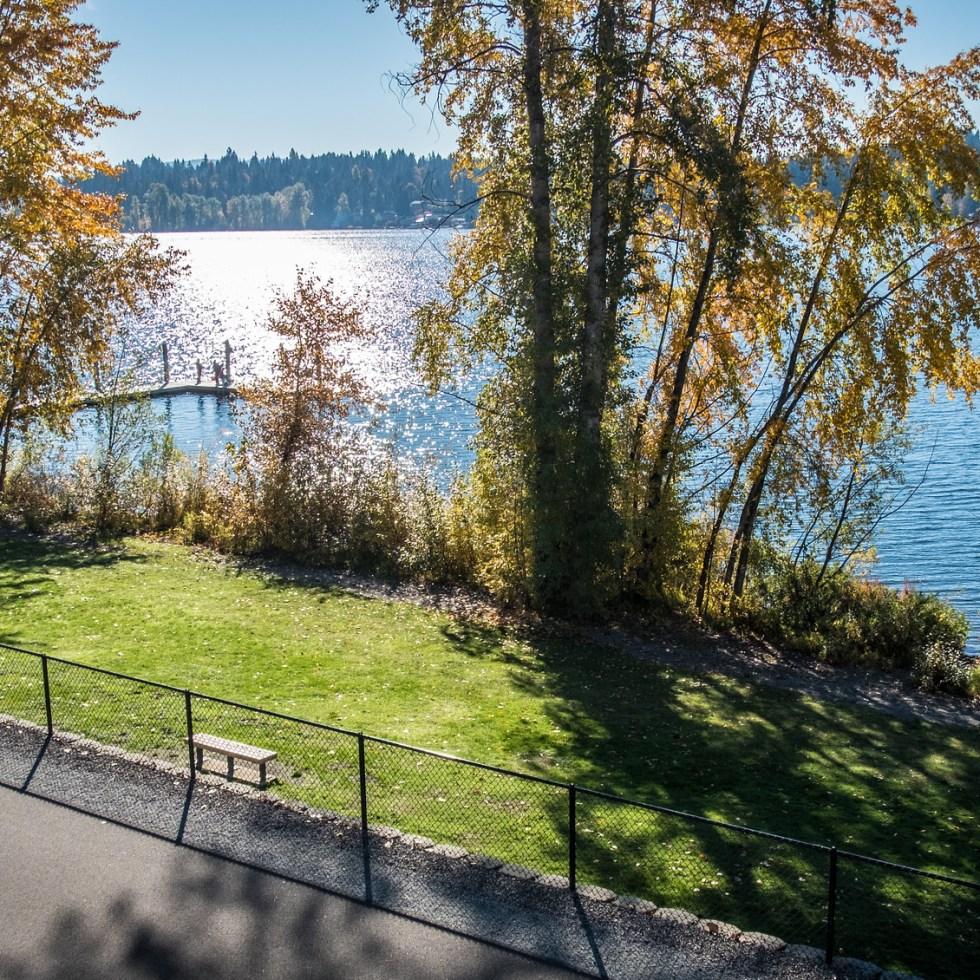 Sunny lake views on the East Lake Sammamish Trail