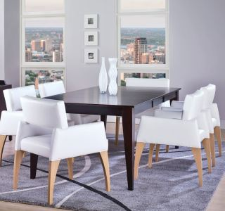 Upholstered Arm Chair Dining Set
