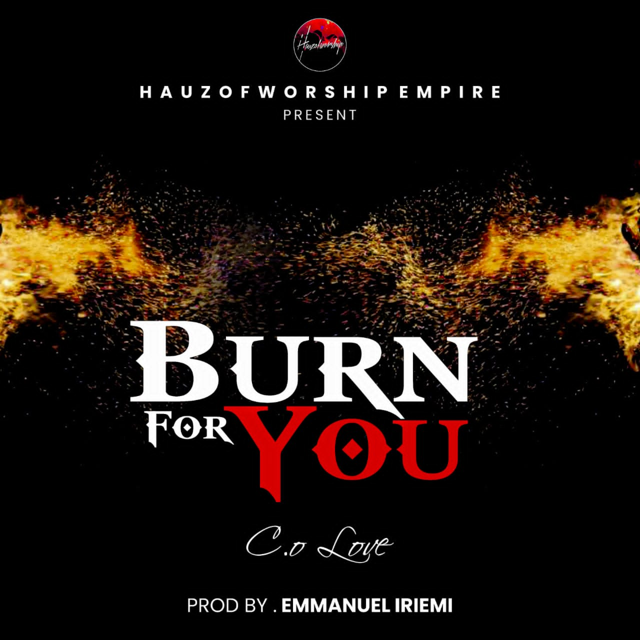 DOWNLOAD Music: C.O.LOVE – Burn For You