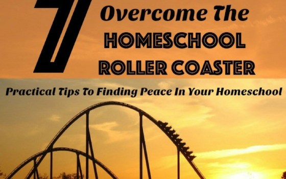 7 Easy Ways To Overcome The Homeschool Roller Coaster
