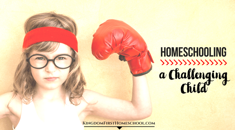 Tips for Homeschooling a challenging child