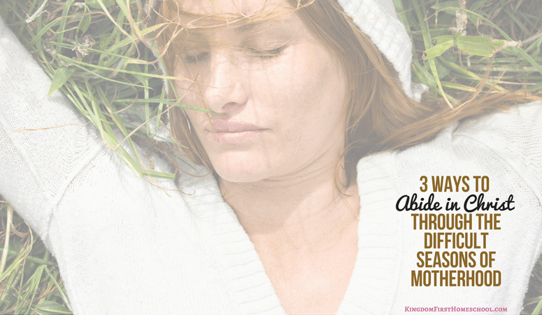3 Ways to to Abide in Christ Through the Difficult Times of Motherhood