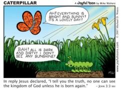 caterpillar_niv