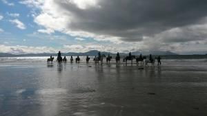 Beach rides on Banna Strand