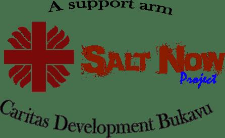 Salt-Now-Project-Logo