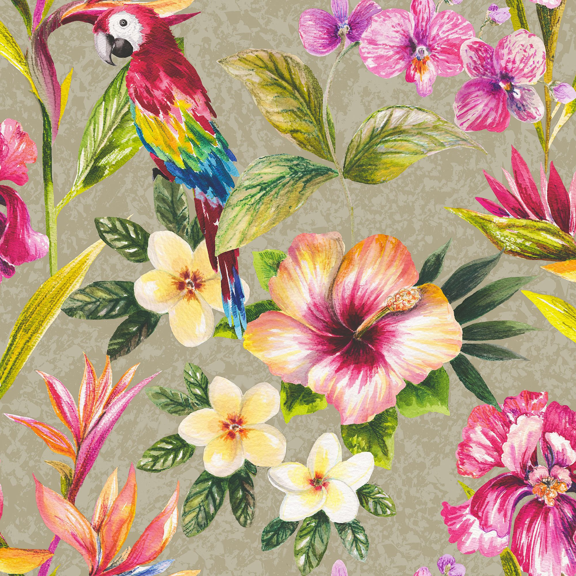 kitchen cabinets clearance countertops lowes tropical parrot floral birds metallic effect wallpaper ...