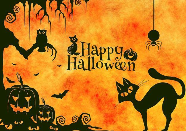 Black and Orange Elegant Halloween Theme