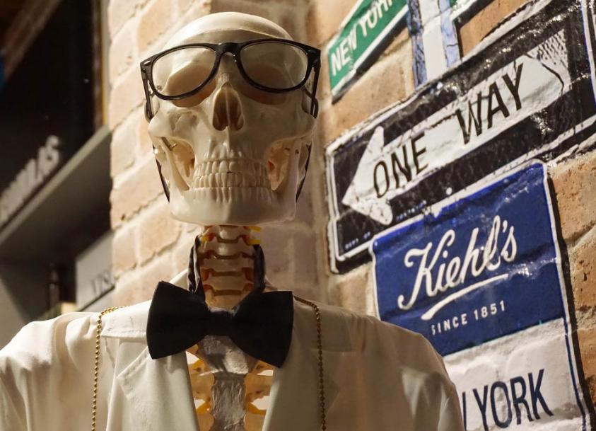 Skeleton Jokes Professor