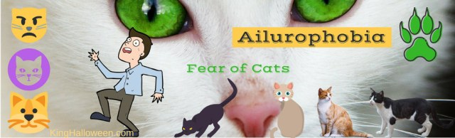 Ailurophobia List of Fears
