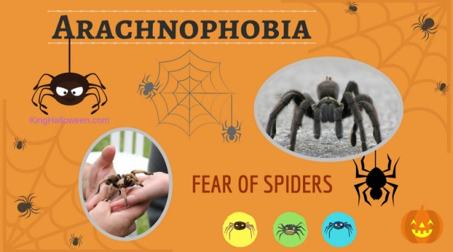 Arachnophobia-fear of spiders graphic
