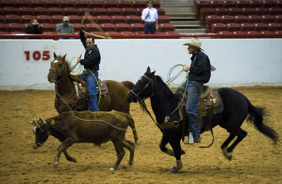 Kingman AZ Hosted Mohave County's First Rodeo