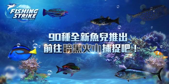 02.新魚種