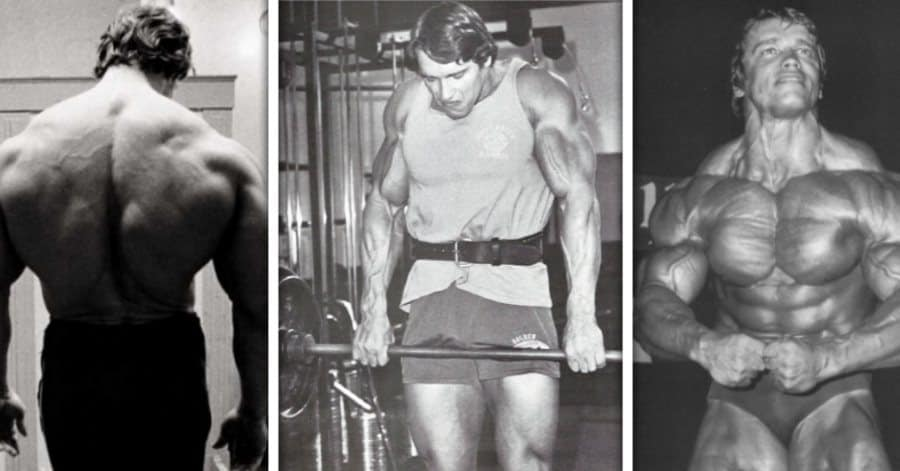 Power Shrugs - Arnold Schwarzenegger Doing Shrugs