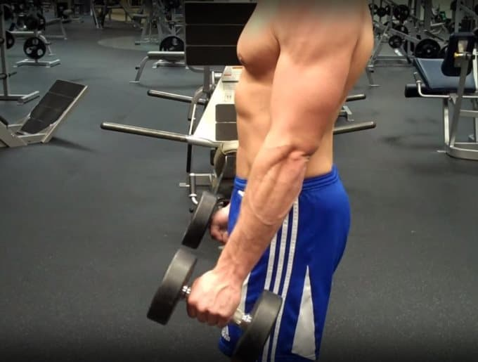 Hammer Curl Starting Position - Side View