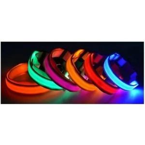 LED koiranpanta