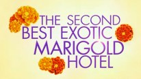 The-Second-Best-Exotic-Marigold-Hotel-TC-1