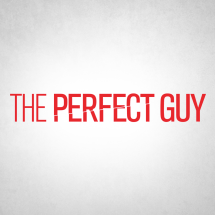 the-perfect-guy1