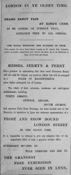1893 Dec 2nd Jermyn & Perry Xmas display a