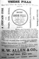 1883 Lynn News Almanac H W Allen & Co