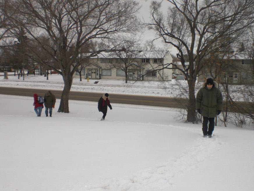 Snow Regina 3