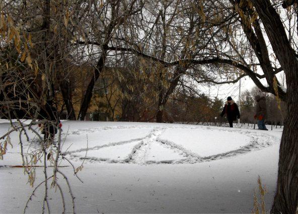 Snow Regina 1b
