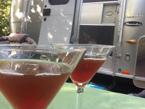 airstream martini