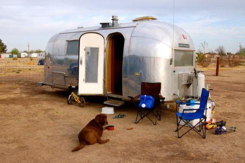 Airstream dog